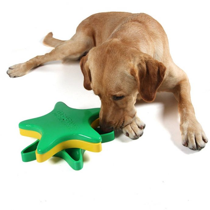 dog toys interactive toy