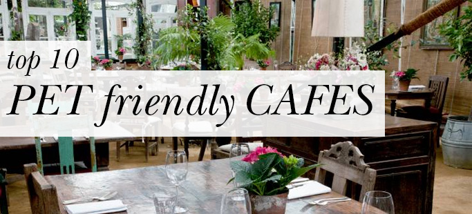 Top 10 Pet-Friendly Cafés