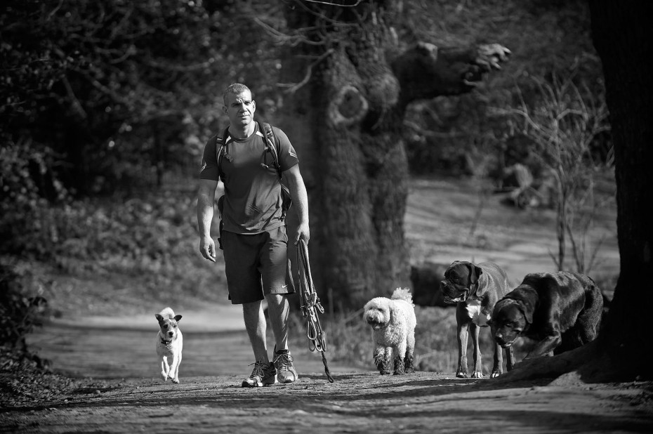 the dog jogger, Barry exercise