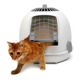 cat carrier with ginger cat