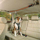 dog ceiling harness for car