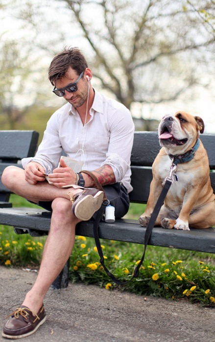 are dogs really man's best friend 5