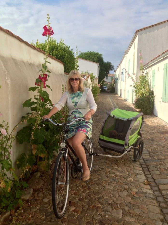 Rufus and Heidi in their cycle trailer, being taken on a tour of Saint-Martin-de-Ré by Denise