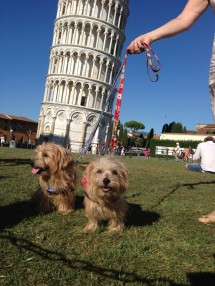 Rufus and Heidi in front of the leaning tower of Pisa