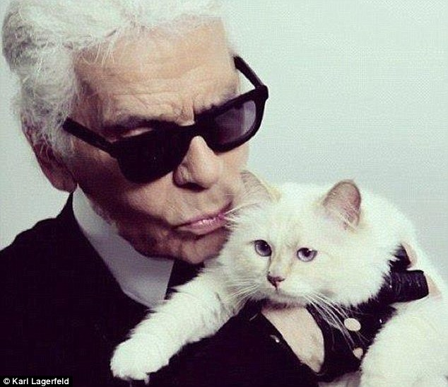 Famous Face Of Chanel Choupette The Cat Inspires New Collection