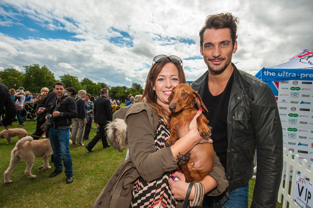 Saturday 7th September 2013 Celebrities and dog lovers support Pup Aid Fun Dog Show as part of the fight against Puppy Farming. Primrose Hill, London, UK