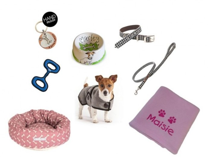 jack russell products