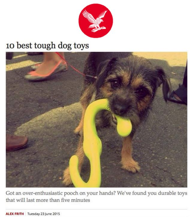 10 best tough dog toys petspyjamas for Really tough dog toys