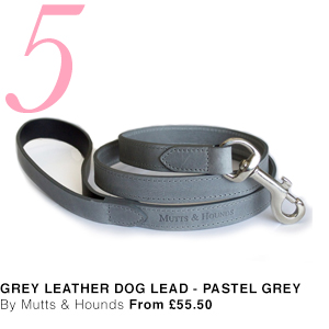 Pastel Grey Leather Dog Lead