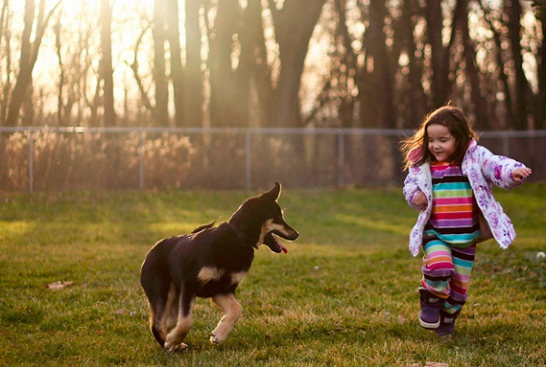asthma more unlikely in children with dogs