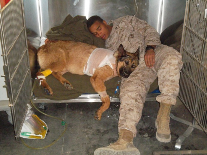 Cpl Rodriguez stayed with Lucca throughout her recovery