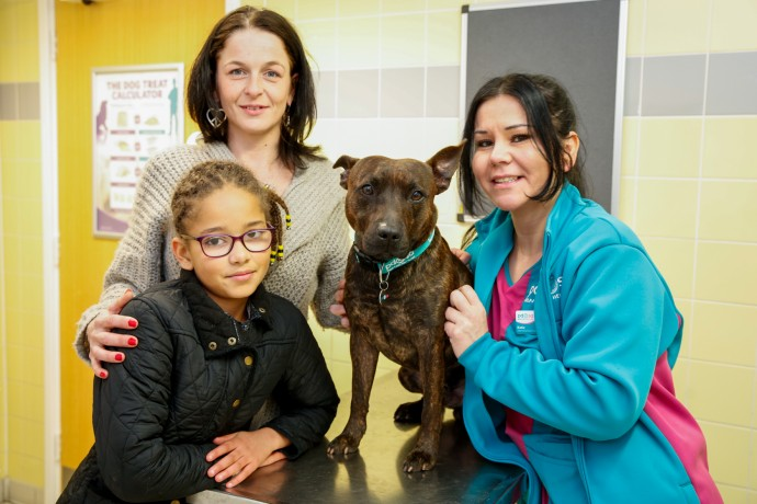 PDSA Gillingham. Shadow with owners Sian Berry and daughter Alisha, 10, and PDSA nurse Kelly Fletcher. Picture by: www.matthewwalkerphotography.com