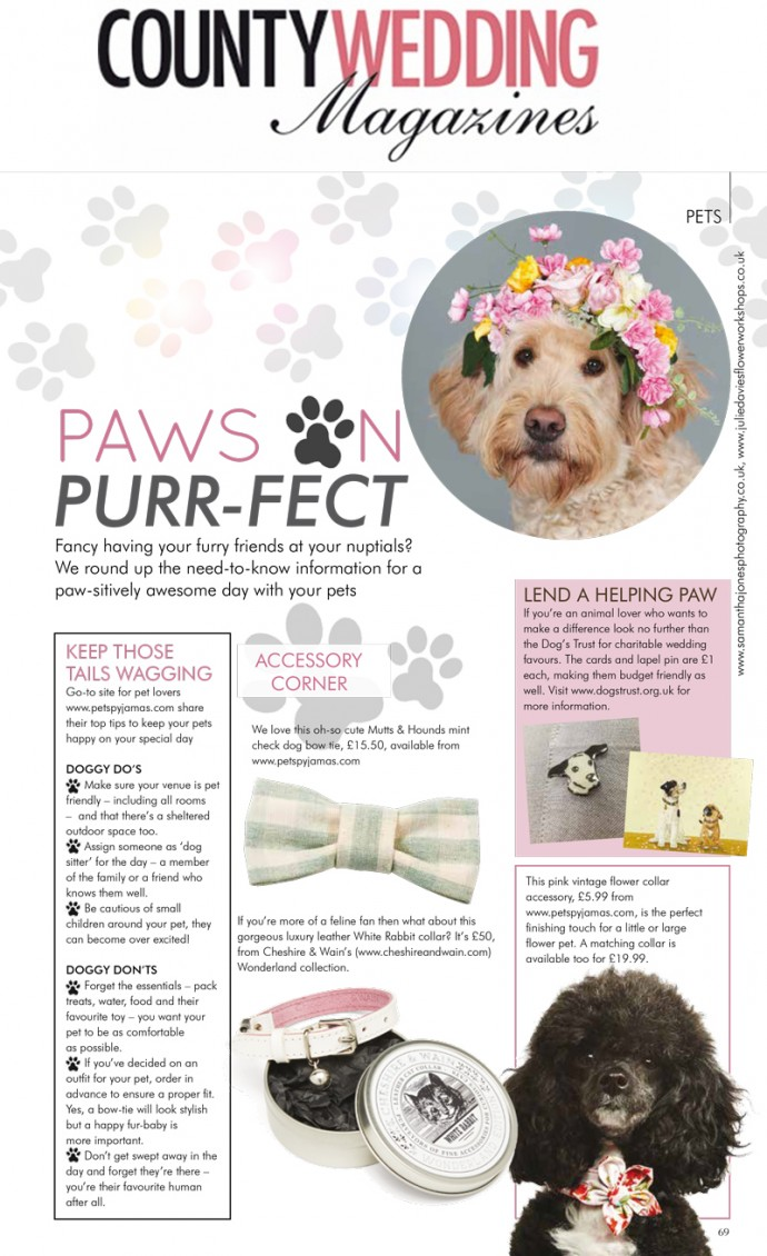 Pets-at-weddings-country-wedding-magazines