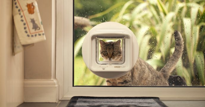 sureflap_dualscan_microchip_cat_flap_glass_install