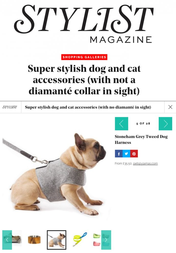 Super Stylish Dog and Cat Accessories