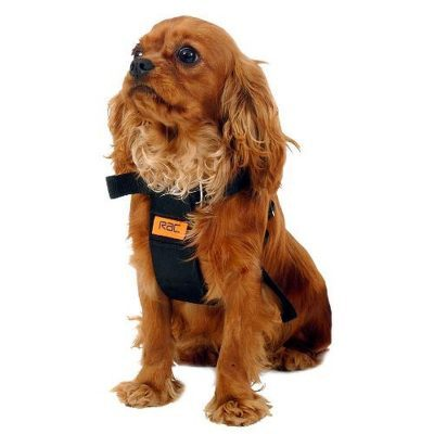 dogs-car-accessories-rac-rac-car-harness-pbr-00162-0