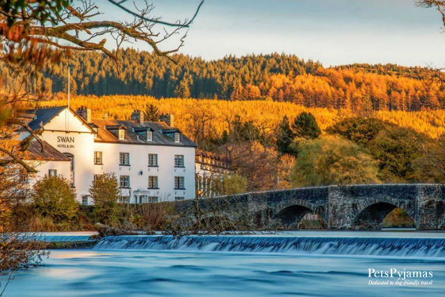 PetsPyjamas - The Swan Hotel and Spa at Newby Bridge, Cumbria